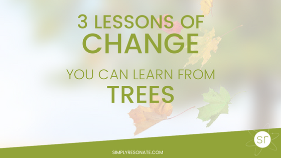 3 lessons of change from trees